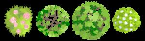 Shrubs, Landscaping